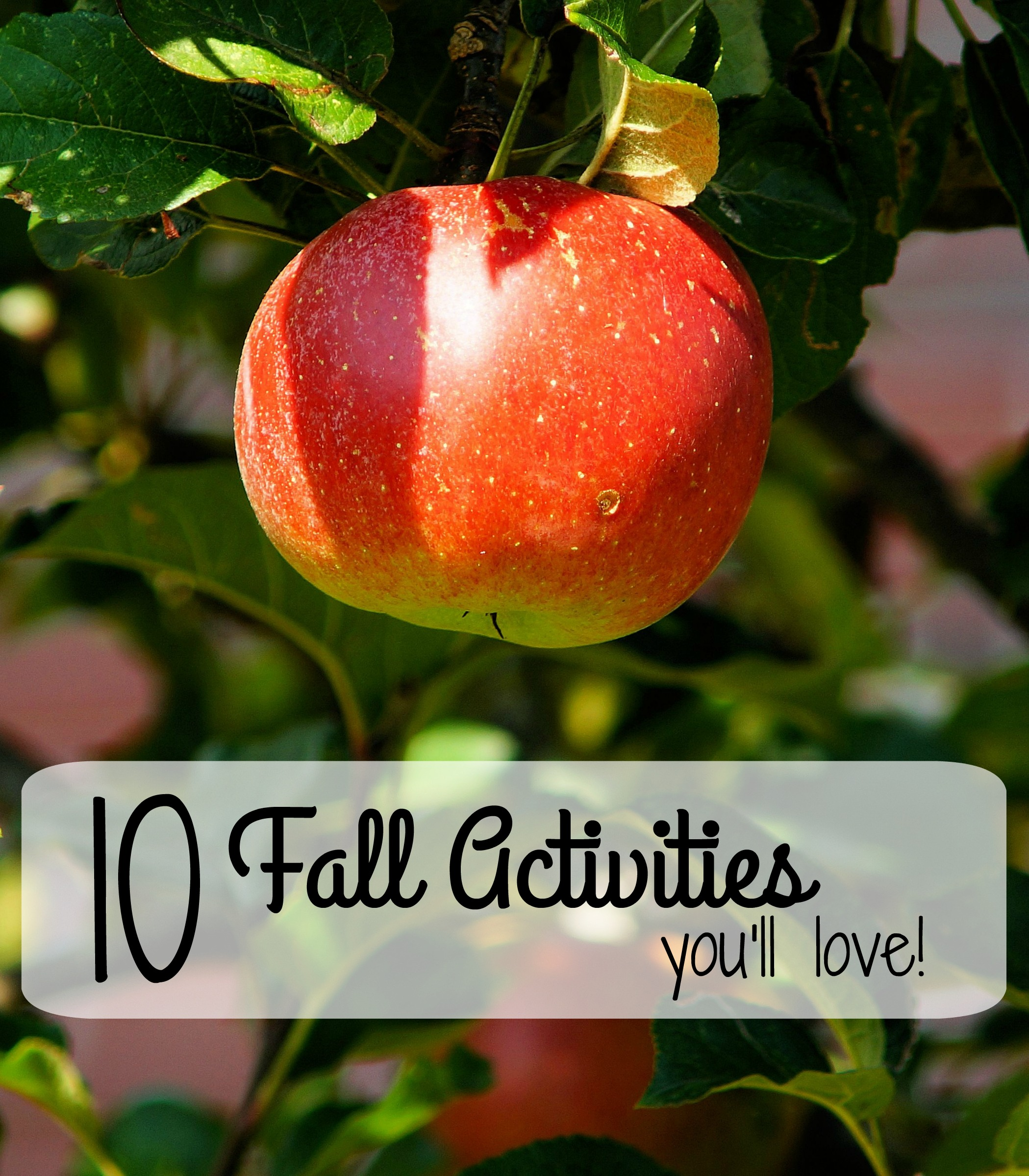10 Fall Activities You'll Love